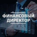 Курс финансовый директор